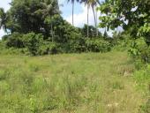 Bank Mandiri : 2 bidang tanah dijual 1 paket SHM No. 981 seluas 20.000 m2 dan SHM No. 982 seluas 4.984 m2 Desa Ranoeya Kab. Konawe